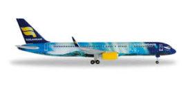 avion de ligne bleu