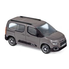 voiture minibus grise