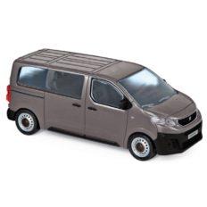 camionette minibus grise